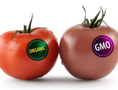 Как избежать покупки продукта, содержащего ГМО?